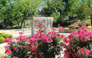 Flowers and fountain near retreat location for A Memory Grows